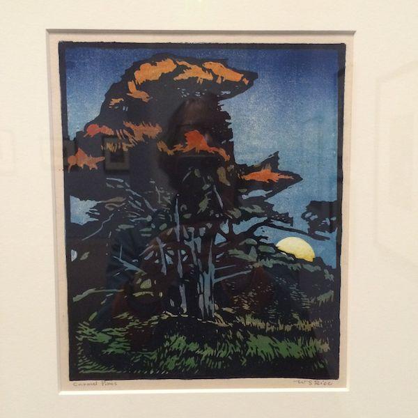 Pt. Lobos Cypress c.1925